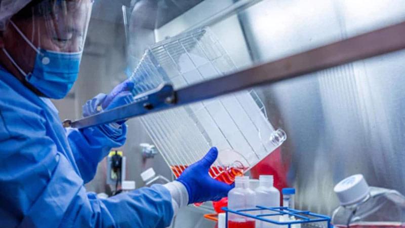 GCHQ Ηνωμένο Βασίλειο: Επιχείρηση για να σταματήσει η προπαγάνδα κατά των εμβολίων του COVID-19