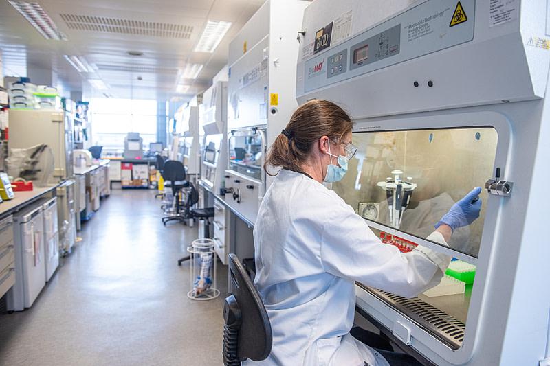 Oxford University: Χάκερς εισέβαλαν στα εργαστήρια έρευνας του COVID-19
