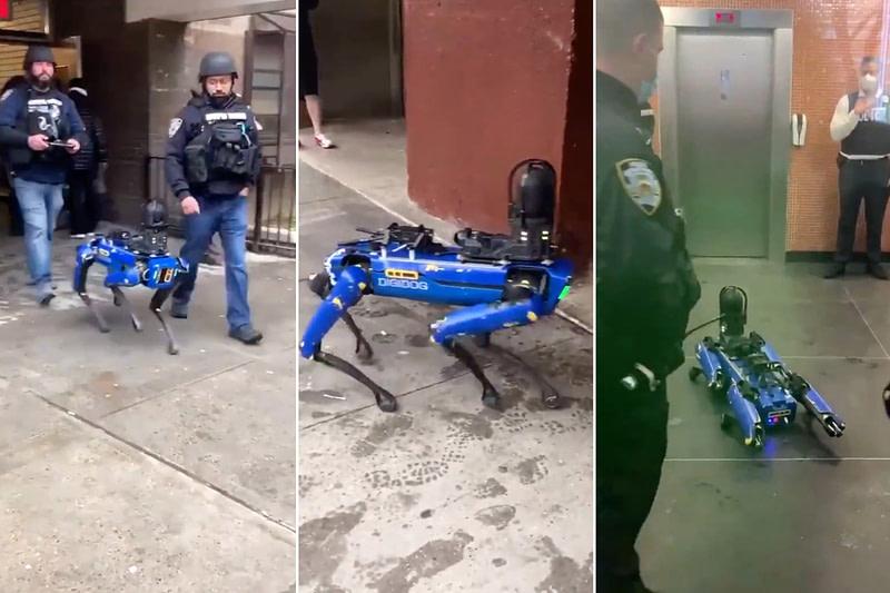 σκύλος - ρομπότ