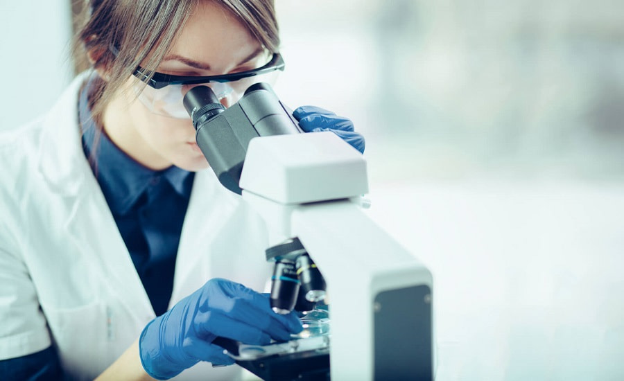 Apex Laboratory