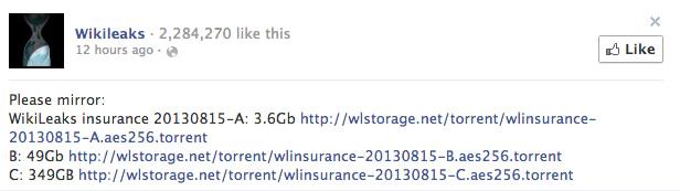 wikileaks insurance
