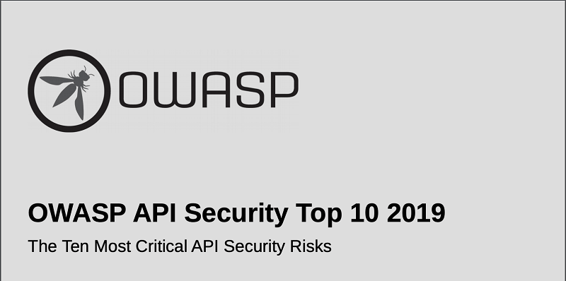 软件API:保护开发人员的风险和方法