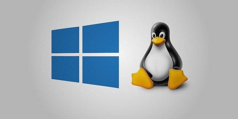 Windows & Linux kernels windows bugs