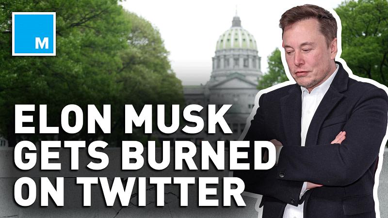 Тесла Маск против Google и Twitter