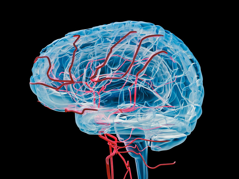 Επιστήμονες συνέδεσαν ανθρώπινο εγκέφαλο με υπολογιστή μέσω φλέβας!