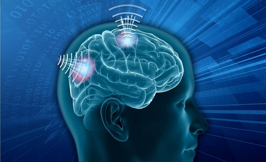 Google εγκεφάλου