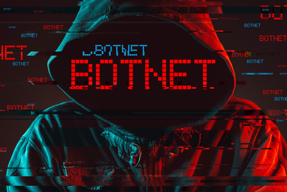 ΗΠΑ - Εσθονός υπήκοος - botnet
